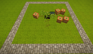 Pumpkin farm.png
